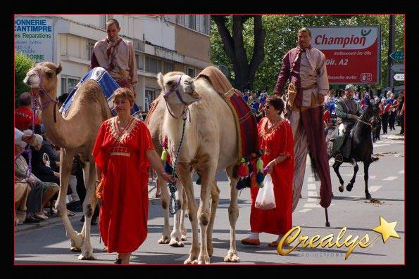 dromadaires pour mariage oriental - Location De Chameau Pour Mariage